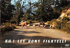 BR21703 Sur les routes de Corse pigs pork   france