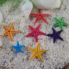 20pcs Natural Tiny Starfish Ornaments DIY Crafts Decor For Jewelry Making