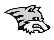 12 Wolf Temporary Tattoo, School Mascot Cheerleader Face Tats