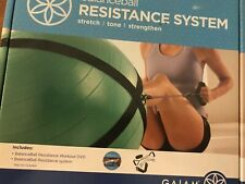 NEW Gaiam Balance Ball Resistance Kit Strap Cord System Workout DVD Health