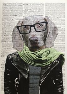 A3 Weimaraner Print Vintage Dictionary Page Picture Humanised Dog In Clothes