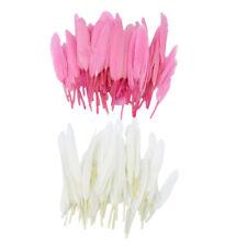 100x belles plumes d'oie blanches et roses pour la décoration d'artisanat