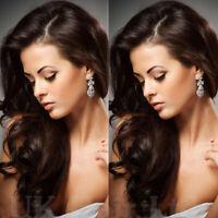 Glueless Natural Wavy Lace Front Wig Dark Brown Malaysian Human Hair Wigs Womens