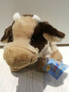 Webkinz Brown Cow