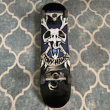 "Rare Tony Hawk Birdhouse Skateboard 33"" Blue Bird Skull Bones Complete Board"