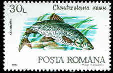 Scott # 3732 - 1992 - ' Fish, Chondrostoma Nasus '