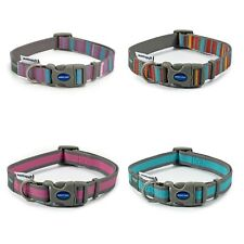 Ancol Made From 100% Recycled Dog Puppy Collars Lead