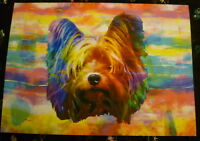 Funky Colourful Yorkshire Terrier Art Print A4 Surplus Stock Bargain Price