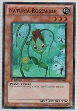 3x (M/NM) Naturia Rosewhip - HA02-EN041 - Super Rare - Unlimited Edition  YuGiOh