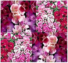 (3,000) GODETIA AZALEA DOUBLE MIX Flower Seeds - Clarkia amoena - Combined S&H