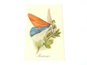 Aux Allies Vise Paris No.16 Montenegro Butterfly Unused French Postcard