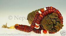 """Tibet Corne de buffle Mala de Os """"magnifique Qualité"""" Collier Rosaire Dharma 74"""