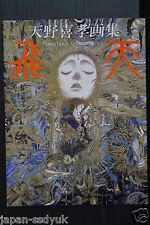 JAPAN Yoshitaka Amano artbook Hiten Final Fantasy