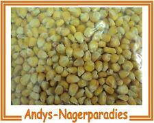 25kg gereinigter Futtermais Mais gelb   Mais  Hühner Taubenfutter Geflügelfutter