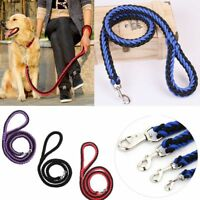 thoracique le chien de formation animal traction corde gros chien les laisse