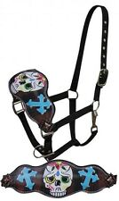 Showman Leather Bronc Style Halter w/ Painted Sugar Skulls & Crosses! New Tack!