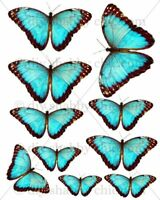Furniture Decal Image Transfer Vintage Butterfly Turquoise blue diy Shabby Chic