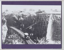 "LAUPAHOEHOE TRESTLE BIG ISLAND 1920's  SILVER HALIDE PHOTO ON 8x10"" PURPLE MAT"
