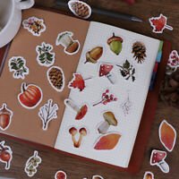 46Pcs The story about forest stickers set decorative stationery stickers DIY HF