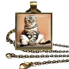 "Scottish Fold Cat Glass Top Pendant Cat Lover Gift Necklace with 24"" Chain"