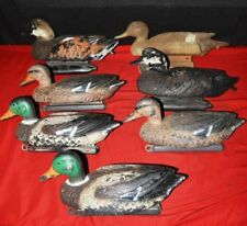 Plastic Duck Decoy Assortment lot of 7 ducks for hunting