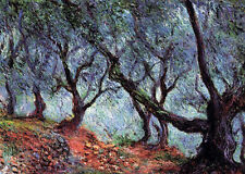 Oil painting Claude Monet - Grove of Olive Trees in Bordighera landscape