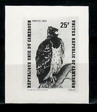 Photo Essay, Cameroon Sc738 Bird, Eagle.