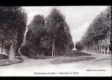 MONTEREAU (77) PROMENADE des NOUES