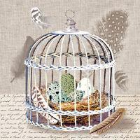 Servietten 20, Serviettentechnik Birds Nest Ambiente 33 x 33