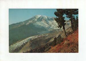 Vintage Post Card - Mount Rainier and Nisqually Glacier