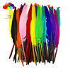 10-100 pcs 14 color 14-16inch Plumes Turkey Pointers Quill Feather Decorations