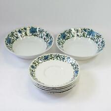 Set of 5 Midwinter Spanish Garden 14.5cm Teacup Saucers & 2x 16cm Fruit Bowls