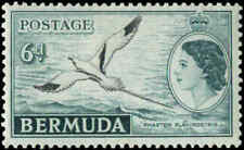Bermuda Scott #152 Mint