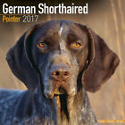 German Shorthaired Pointer 2017 Wall Calendar by Avonside (12