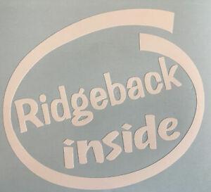 RHODESIAN RIDGEBACK INSIDE ON BOARD CAR WINDOW STICKER DECAL WHITE ALL COLOURS