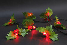 60 LED 5.9M 30 Holly & Double Berry Red Christmas Wedding Party String Lights