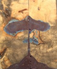 Stabilized Buckeye Burl for Knife Scales, Pistol Grips, etc (1359)