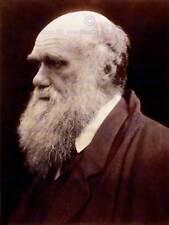 Foto RITRATTO Cameron NATURALISTA Charles ROBERT Darwin art print poster hp1015