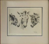 "William Robinson Leigh Etching DONKEYS  (United States, 1866 - 1955,) 15""H 17'W"