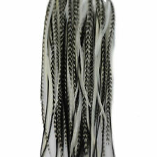 Hair feather extensions long whiting   grizzly rooster  extension