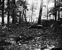New 8x10 Civil War Photo: Casualties at the Foot of Little Round Top, Gettysburg