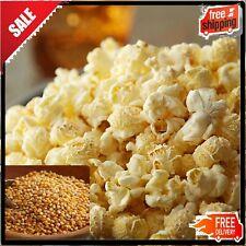50 lb. Extra Large Mushroom Popcorn Kernels for Carnival Show Food Cinema SnackS
