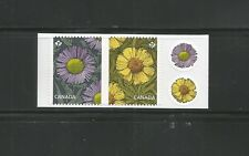 BOOKLET PAIR     DAISIES   #2979 - 2980  + STICKERS
