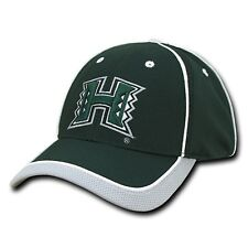 University of Hawaii Rainbow Warriors Jersey Mesh Baseball Snapback Cap Hat