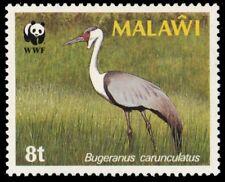 """MALAWI 494 (SG759) - Wattled Crane """"Burgeranus carunculatus"""" WWF (pa79835)"""