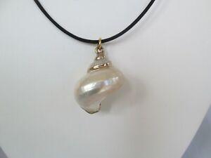 Turbo Large Pearled Seashell Gold Plate Trim Charm Pendant