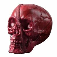 Bloody Head Skull Part Broken Severed Horror Scary Haunted House Halloween Decor