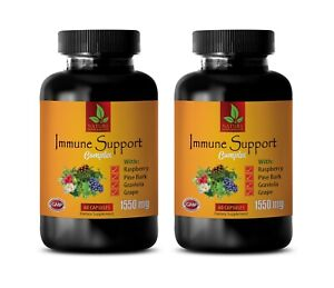 heart health for women - IMMUNE SUPPORT COMPLEX - immune support system 2BOTTLE