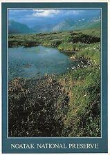 BG13857 alaska natural history noatak national preserve usa