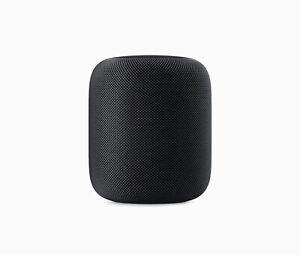 Apple HomePod Spacegrau Sehr guter Zustand